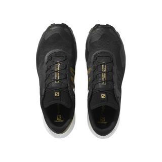 Salomon Sense Ride 3 Ltd Erkek Patika Koşusu Ayakkabısı