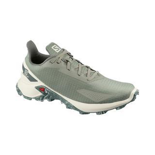Salomon Alphacross Blast Erkek Koşu Ayakkabısı