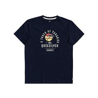 Quiksilver Quiet Hour Erkek T-shirt