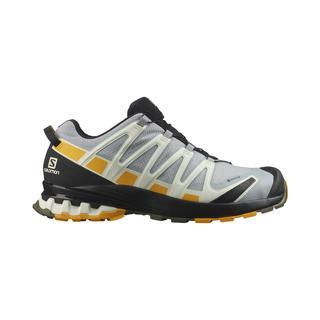Salomon XA Pro 3D V8 Gore-Tex Erkek Patika Koşu Ayakkabısı