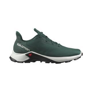 Salomon Alphacross 3 Erkek Patika Koşu Ayakkabısı