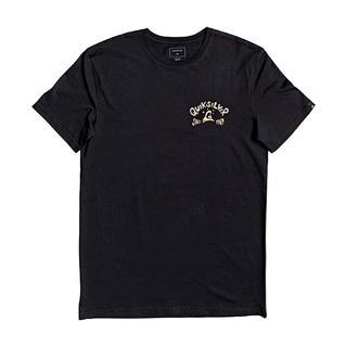 Quiksilver Lullabybeachss Erkek T-Shirt